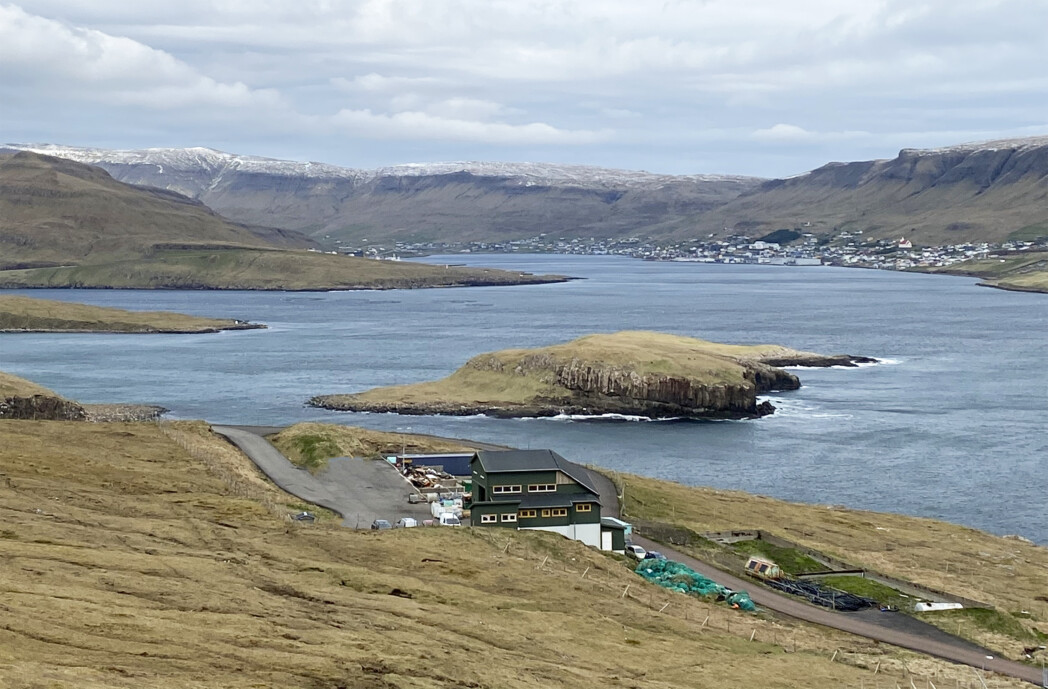 Trøllavík